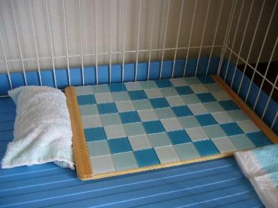 ハリーの寝床